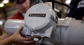 valve repair